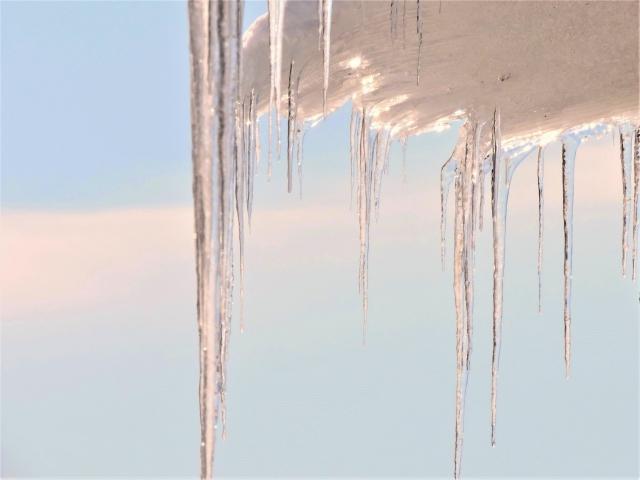 冬日 真冬日
