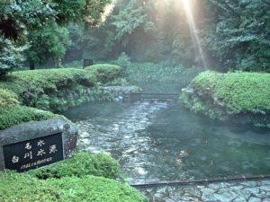 熊本  白川水源